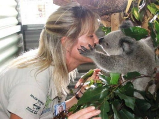 koala-stories_3_7