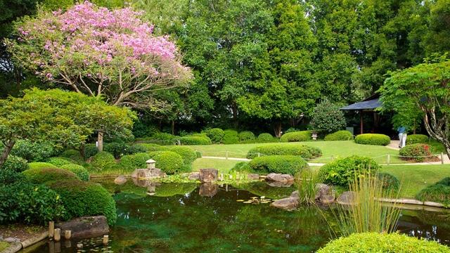 botanical garden brisbane
