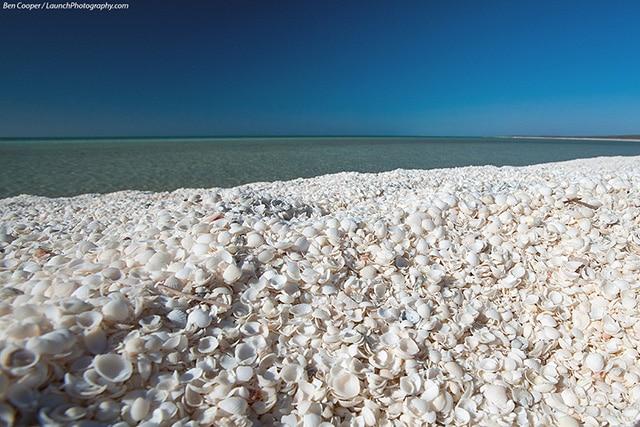 Strände in Australien Shells Beach