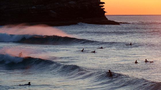 Surfen in Sydney Osten
