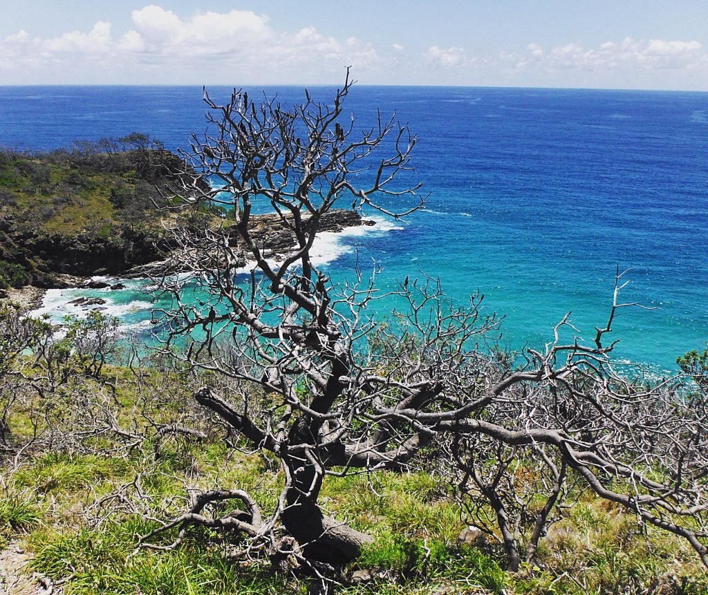 roadtrip brisbane Cairns