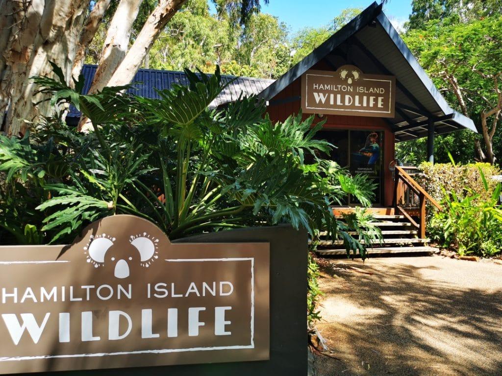 hamilton island wildlife
